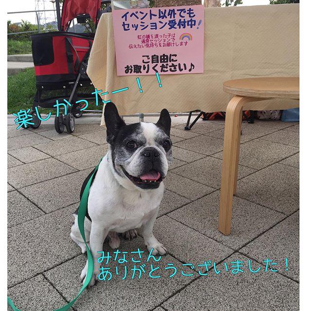 無事に大盛況で終了! @dog.kashiwanoha お昼前に先に帰宅した犬太郎さんへお土産も無事にゲットしあー楽しかったねぇお声かけいただいて知ったお顔、わんちゃんを見るととても元気付けられましたありがとうございますそして新しい出会いもたくさん当日枠がなくてがっかりされた方も多く来月の予約枠どうするか考えてみます️犬にとっても人にとってもいい商品がたくさんあって素晴らしいイベントでしたイベントはほぼ見れなかったんだけど実は犬太郎さんドックタイムレース(徒競走)30M参加したのですタイムとそのお話はまた次回笑ご参加の皆様、ありがとうございました次回12月14日だそうです!クリスマスイベントになるのかな?楽しみ・・#犬太郎ガーデン #犬太郎#ワンワンデー #ワンワンデー柏の葉 #柏の葉tsite #いいものもりだくさん #ゆっくりみたい (Instagram)