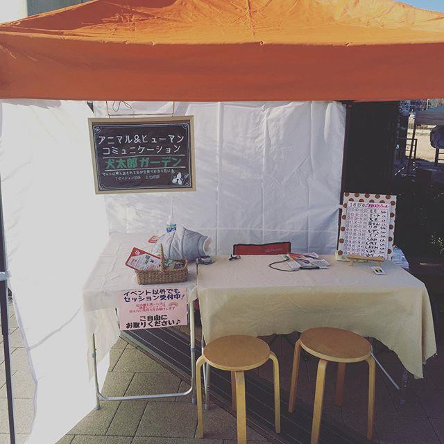セット完了スタッフさんが出店者にカイロ配ってくれてますいつも嬉しい心配りがたくさんありがとうございますワンOneデー柏の葉T-SITEはじまるよー・・#ワンワンデー柏の葉 #寒さ対策#犬太郎ガーデン #犬太郎#アニマルヒューマンコミュニケーション (Instagram)